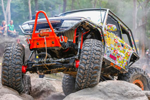 Rock bull vehicle photo